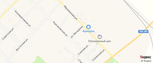 Улица Мичурина на карте Завитинска с номерами домов