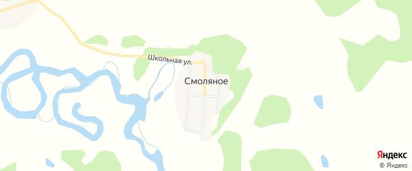 Карта Смоляного села в Амурской области с улицами и номерами домов