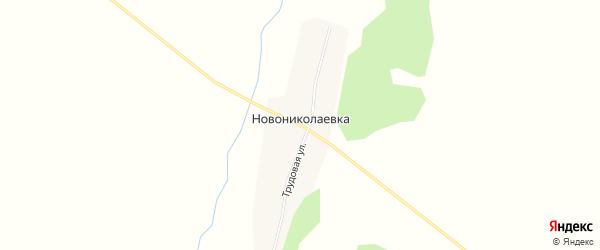 Карта села Новониколаевки в Амурской области с улицами и номерами домов