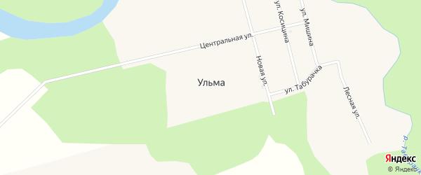 Центральная улица на карте села Ульмы с номерами домов