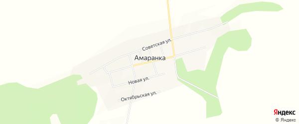 Карта села Амаранки в Амурской области с улицами и номерами домов