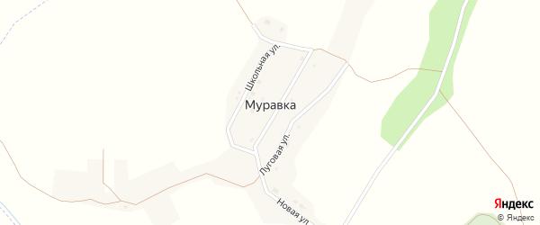 Центральная улица на карте села Муравки с номерами домов