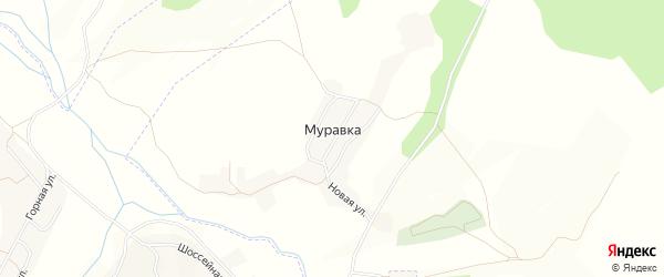 Карта села Муравки в Амурской области с улицами и номерами домов