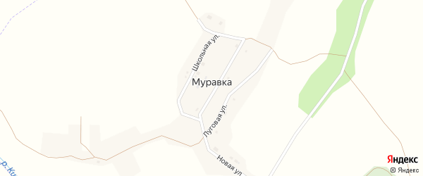 Заречная улица на карте села Муравки с номерами домов