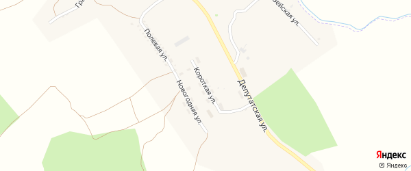 Короткая улица на карте поселка Новорайчихинска с номерами домов