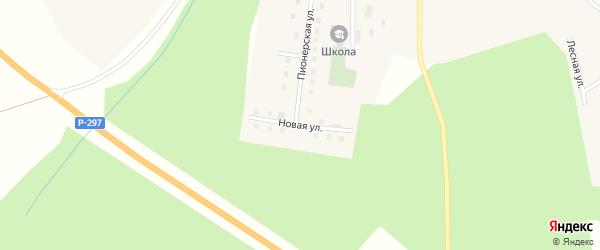 Новая улица на карте села Родионовки с номерами домов