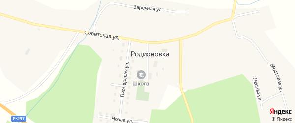 Школьная улица на карте села Родионовки с номерами домов