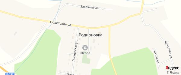 Заречная улица на карте села Родионовки с номерами домов
