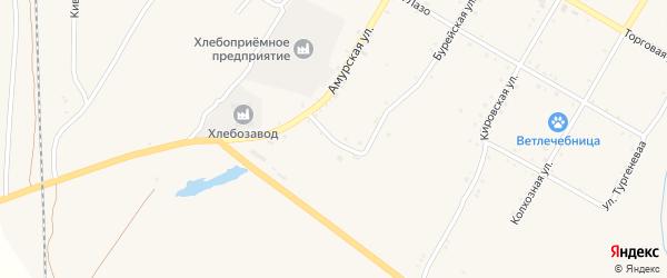 Петровский переулок на карте поселка Буреи с номерами домов