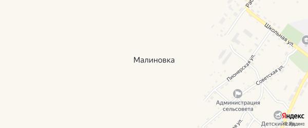 Озерная улица на карте села Малиновки с номерами домов