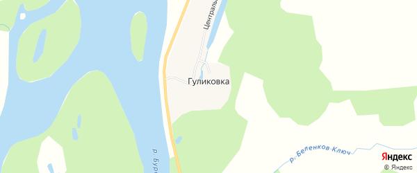 Карта села Гуликовки в Амурской области с улицами и номерами домов