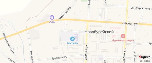 Раздольный переулок на карте Новобурейского поселка с номерами домов