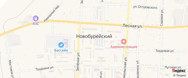 Партизанский переулок на карте Новобурейского поселка с номерами домов