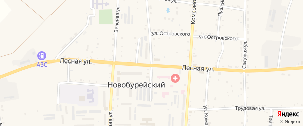 Пионерская улица на карте Новобурейского поселка с номерами домов