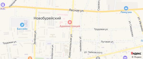 Трудовая улица на карте Новобурейского поселка с номерами домов