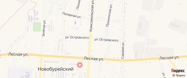 Улица Островского на карте Новобурейского поселка с номерами домов