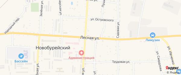 Лесная улица на карте Новобурейского поселка с номерами домов