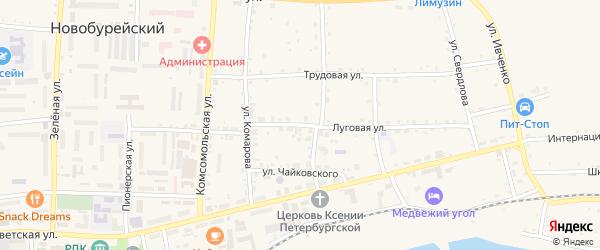 Луговая улица на карте Новобурейского поселка с номерами домов