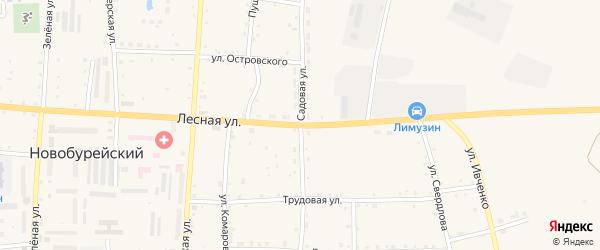 Садовая улица на карте Новобурейского поселка с номерами домов