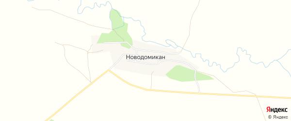 Карта села Новодомикана в Амурской области с улицами и номерами домов