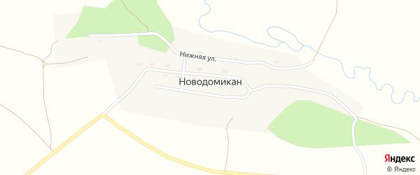 Центральная улица на карте села Новодомикана с номерами домов