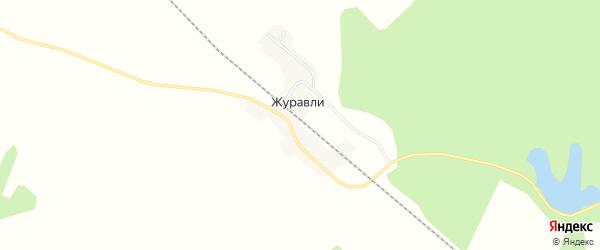 Карта станции Журавли в Амурской области с улицами и номерами домов