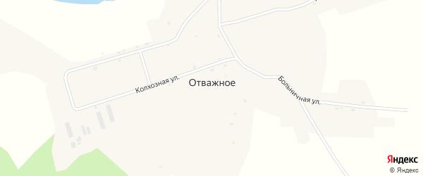 Больничная улица на карте Отважного села с номерами домов