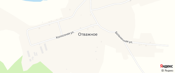 Совхозная улица на карте Отважного села с номерами домов