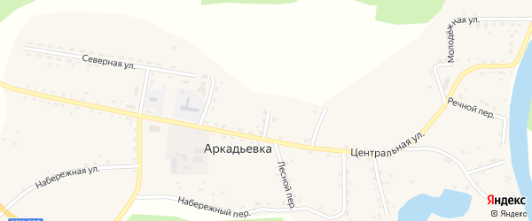 Лесной переулок на карте села Аркадьевки с номерами домов