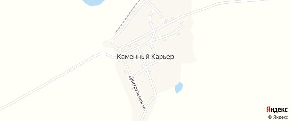 Центральная улица на карте села Каменного Карьера с номерами домов