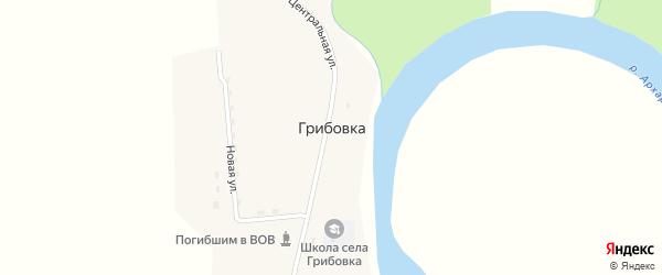 Загородная улица на карте села Грибовки с номерами домов