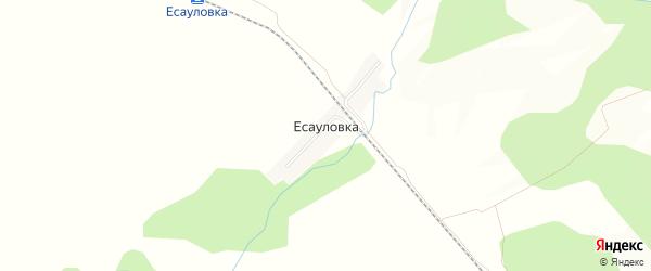 Карта железнодорожной станции Есауловки в Амурской области с улицами и номерами домов