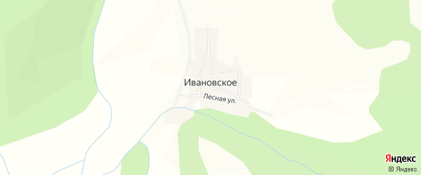 Карта Ивановского села в Амурской области с улицами и номерами домов