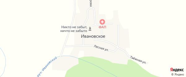 Таежная улица на карте Ивановского села с номерами домов