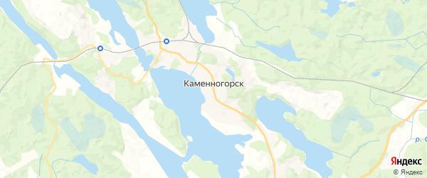 Карта Каменногорска с районами, улицами и номерами домов