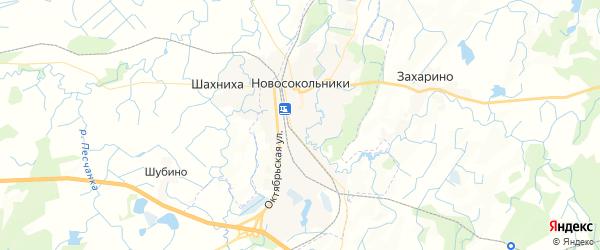 Карта Новосокольников с районами, улицами и номерами домов