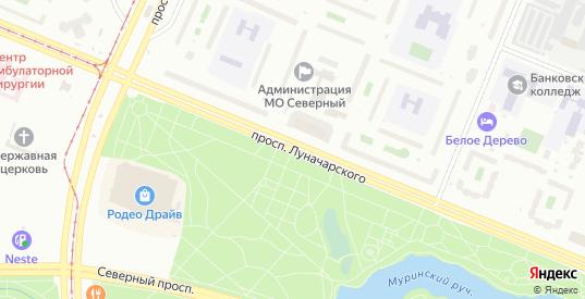 Луначарского 106 индивидуалки