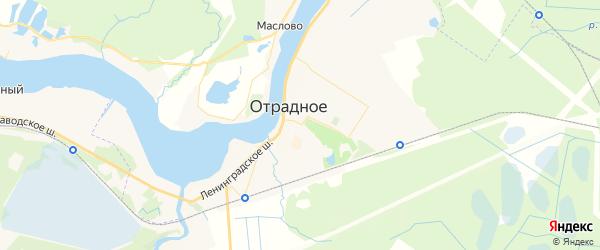 Карта Отрадного с районами, улицами и номерами домов: Отрадное на карте России