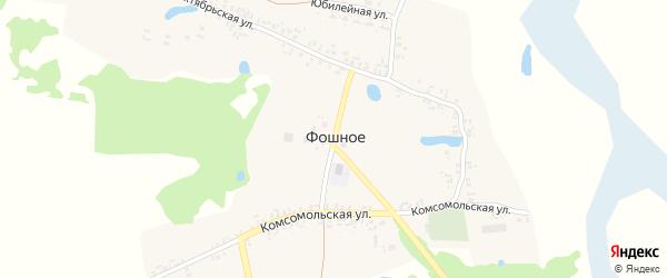 Центральная улица на карте деревни Фошного с номерами домов