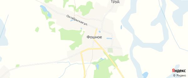 Карта деревни Фошного в Брянской области с улицами и номерами домов