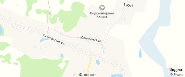 Юбилейная улица на карте деревни Фошного с номерами домов