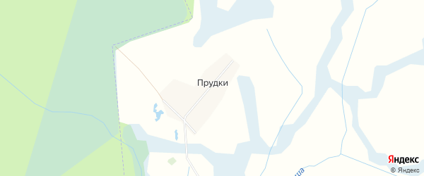 Карта поселка Прудки в Брянской области с улицами и номерами домов