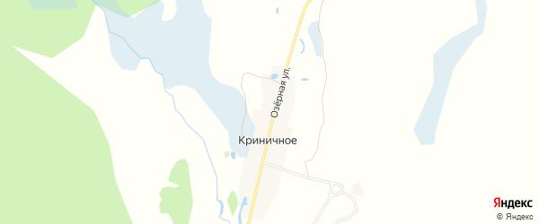 Карта поселка Криничного в Брянской области с улицами и номерами домов