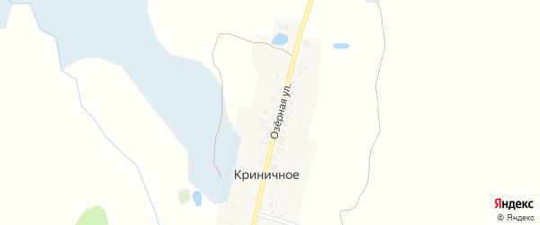 Озерная улица на карте поселка Криничного с номерами домов