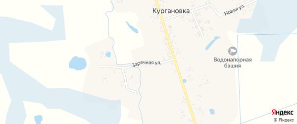 Заречная улица на карте деревни Кургановки с номерами домов