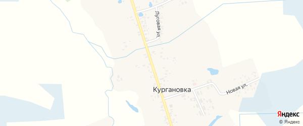 Центральная улица на карте деревни Кургановки с номерами домов