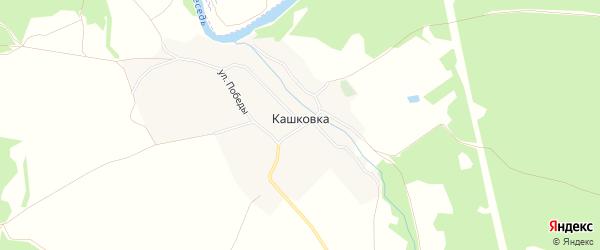 Карта деревни Кашковки в Брянской области с улицами и номерами домов