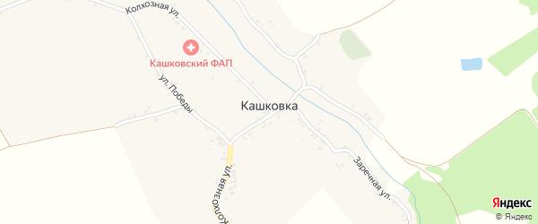 Заречная улица на карте деревни Кашковки с номерами домов