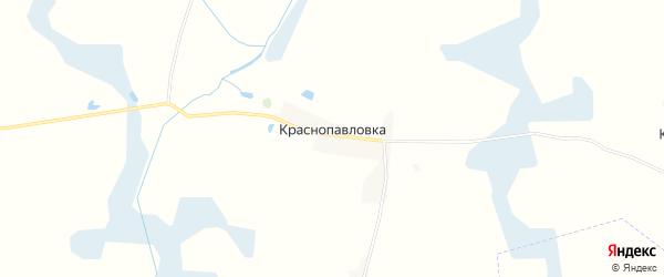 Карта поселка Краснопавловки в Брянской области с улицами и номерами домов
