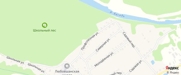 Профсоюзная улица на карте деревни Любовшо с номерами домов
